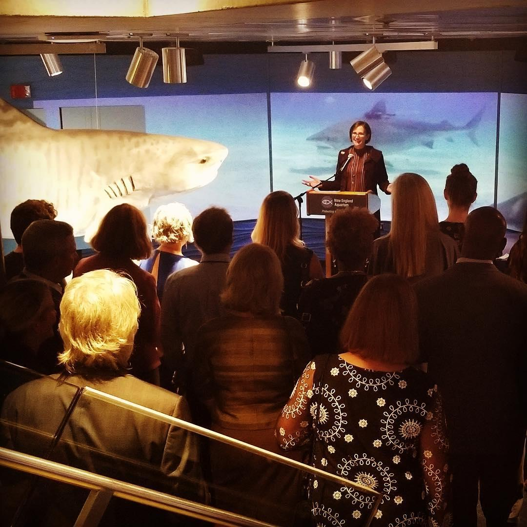 Dean Toddi Steelman addresses alumni at the New England Aquarium