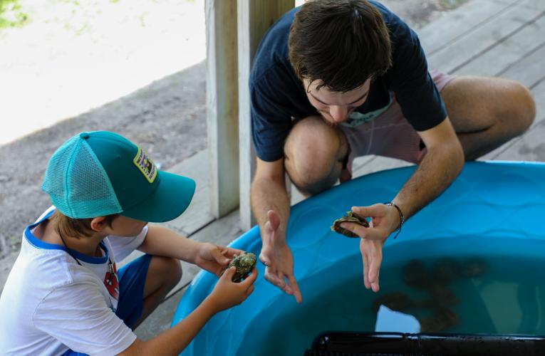 A boy learns about oysters during Marine Lab open house