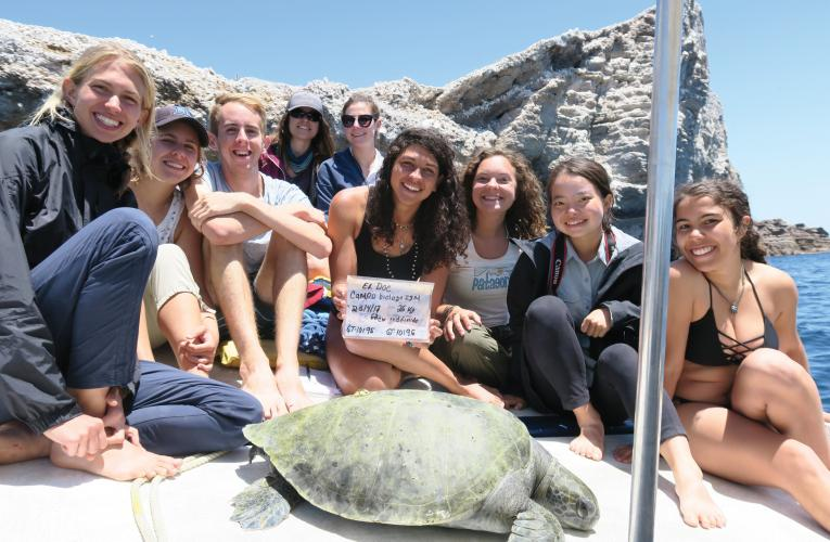 Group of students with a sea turtle