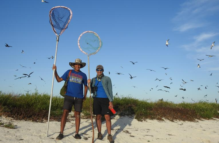 Students researching Sooty Terns at Dry Tortugas National Park