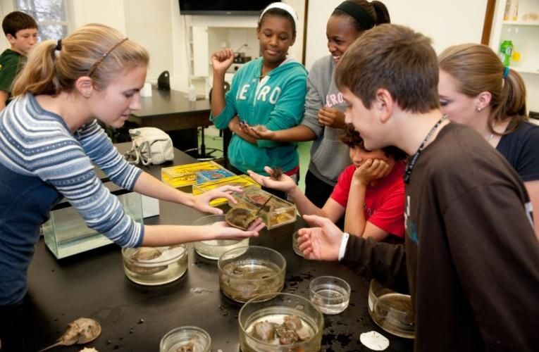 Duke Marine Lab Community Science Program