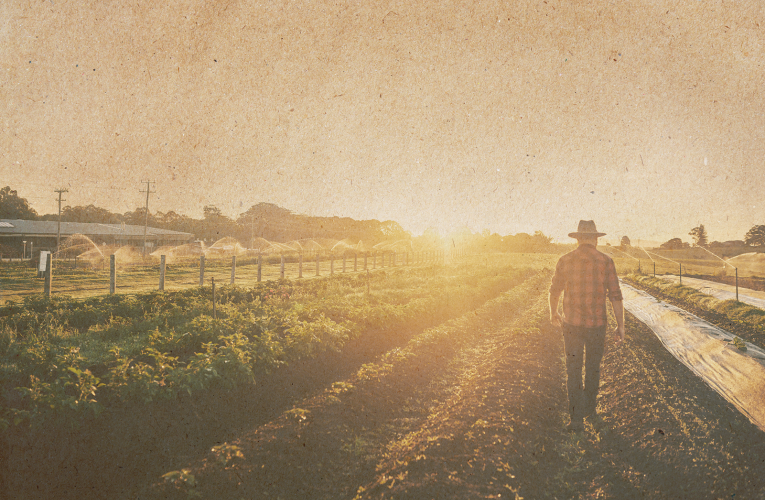 farmer walking into sunset