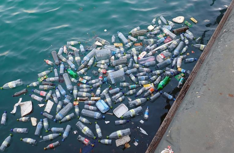 plastic bottles in water