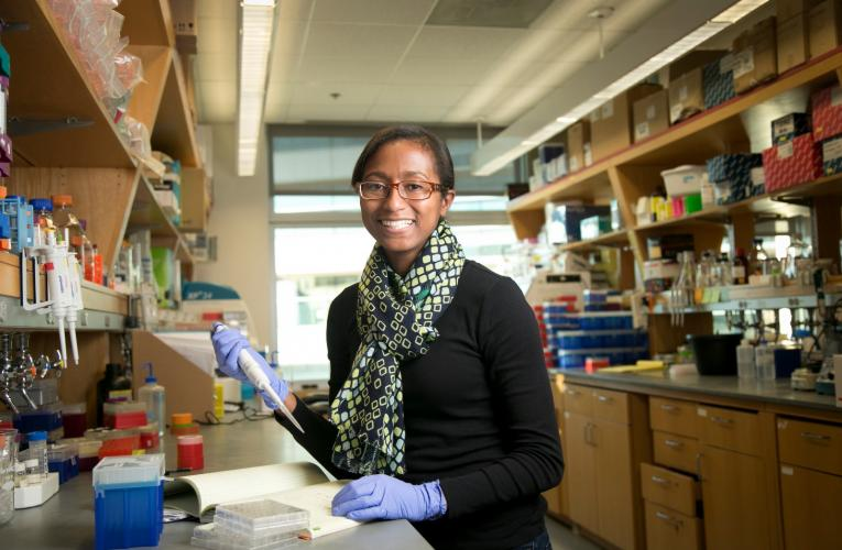 Toxicology PhD student conducts research