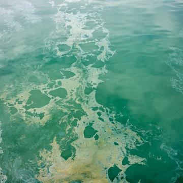Aerial view of a polluted lake